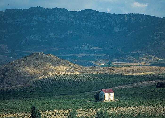 Viña Pomal Gran Reserva 2010