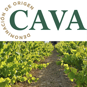 Consejo Regulador D.O. Cava