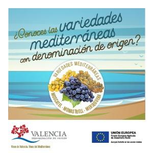Consejo Regulador D.O.P. Valencia