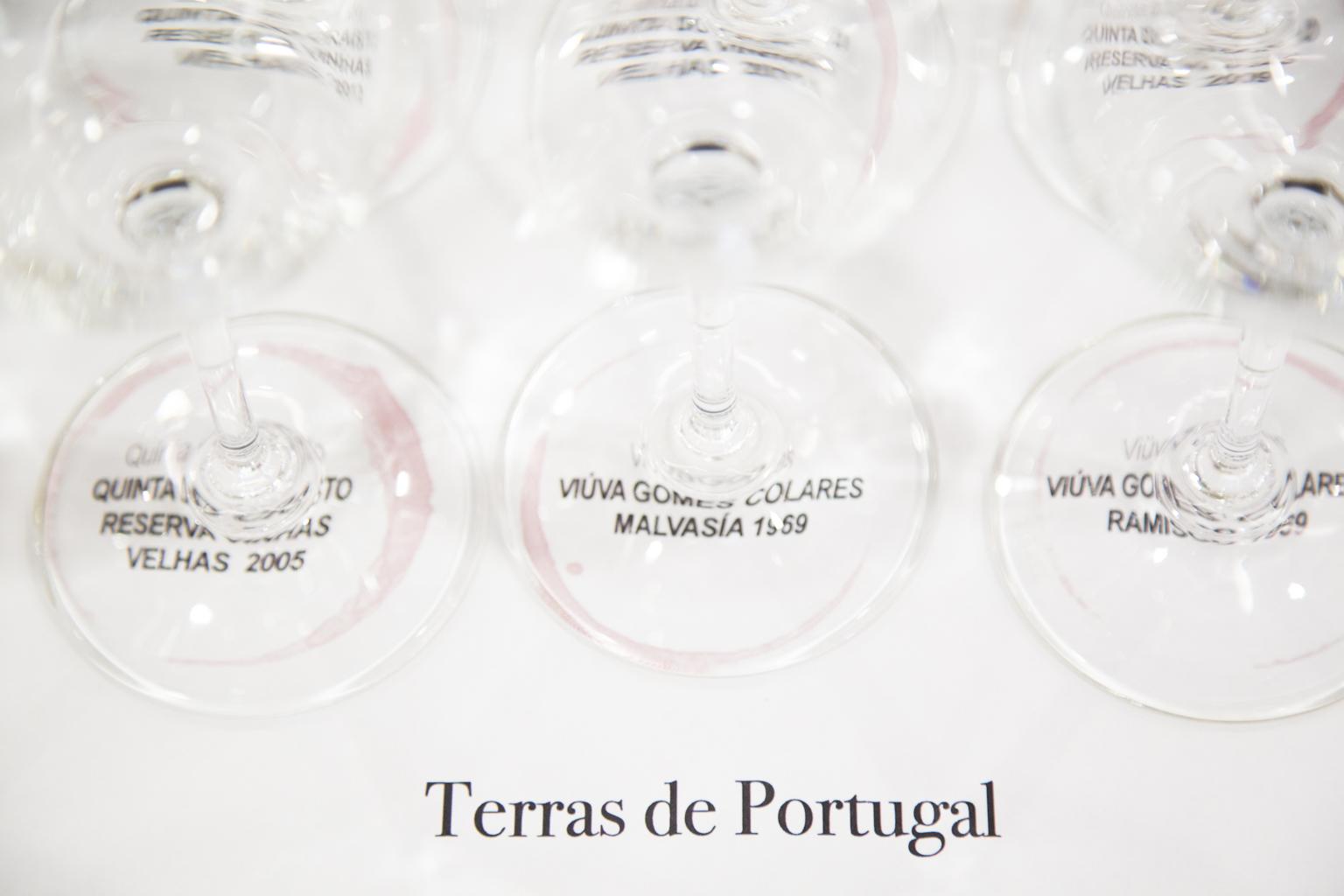 Cata Terras de Portugal en la XV Experiencia Verema